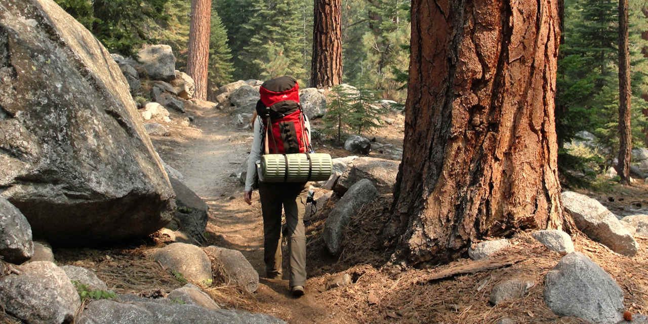 Accommodation & Camping in Sequoia & Kings Canyon