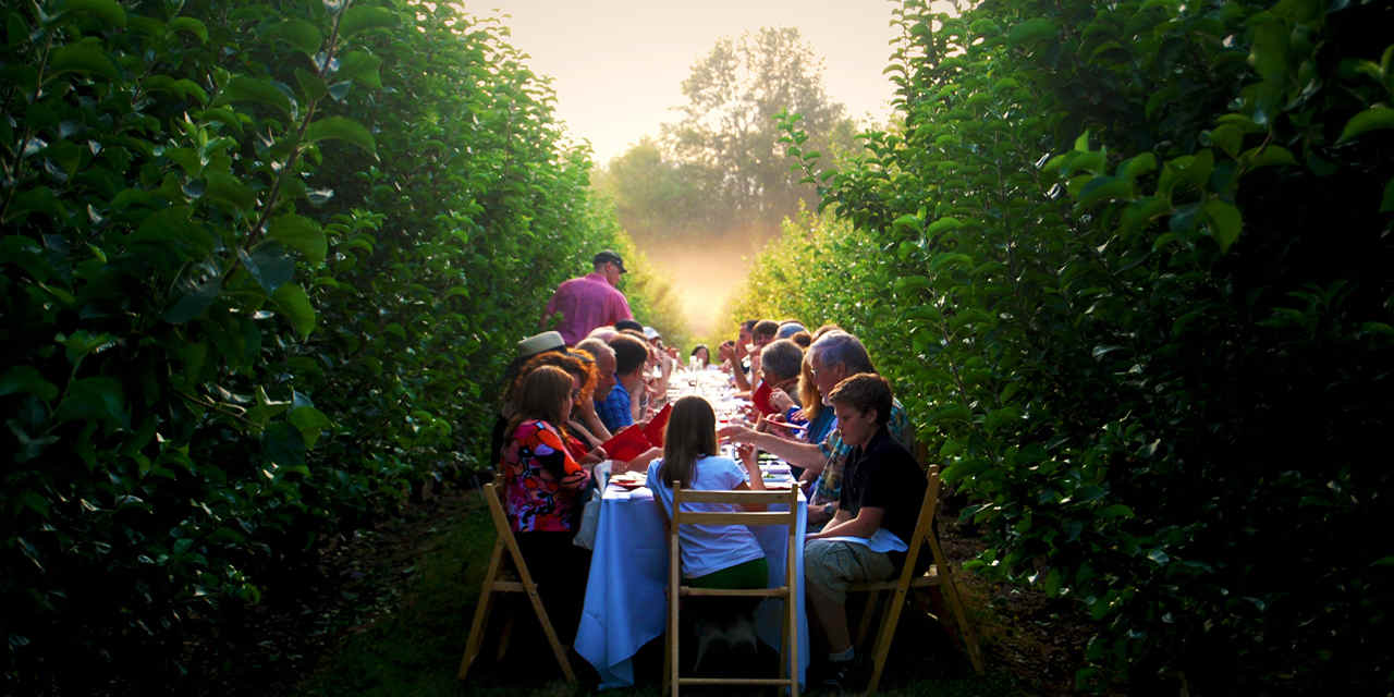 Farm-to-Table Dining Experiences