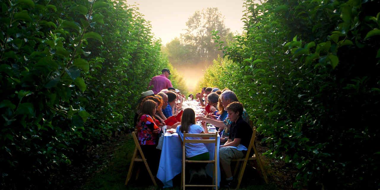 팜투테이블(Farm-to-Table) 다이닝