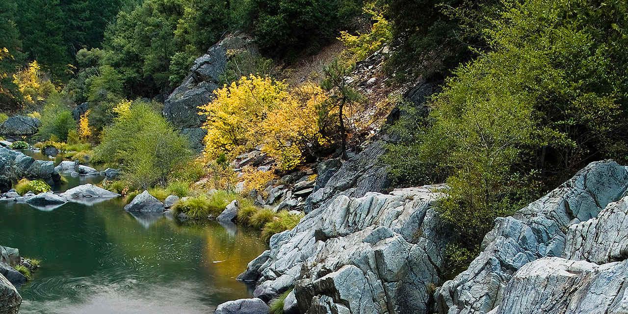 Autumn Foliage in Plumas County
