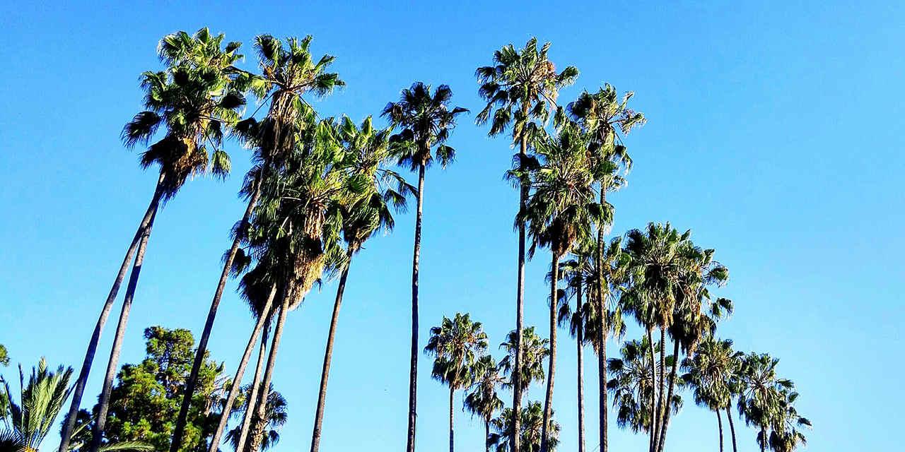 California's Quirky Desert Lodgings VC_FunkyDesertLodging_Breaker_Stock_RF_584196041_1280x640