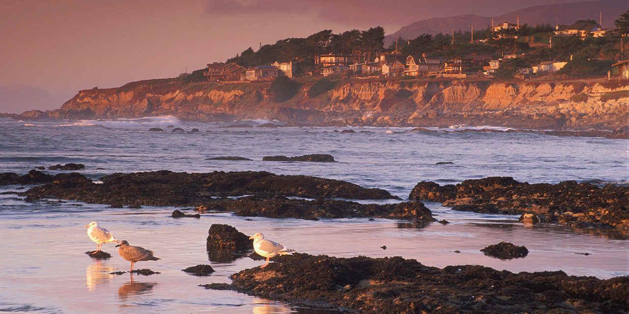 캘리포니아의 놀라운 해안 보존 구역