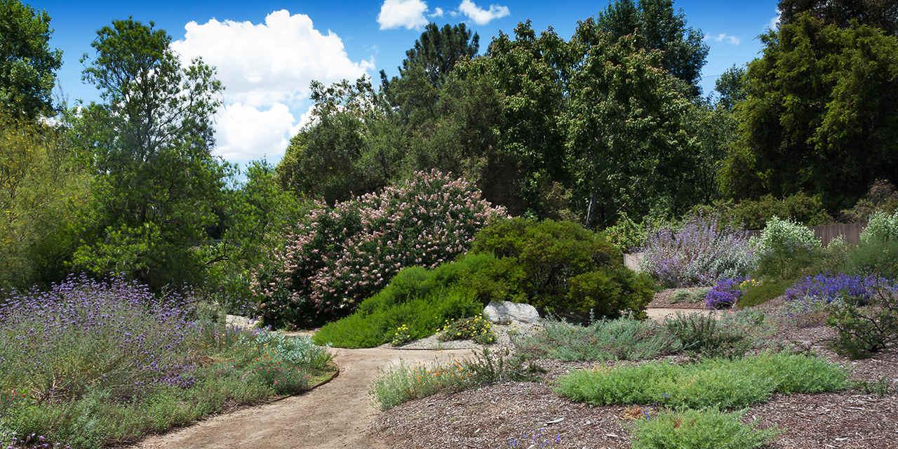 란초 산타 아나 식물원