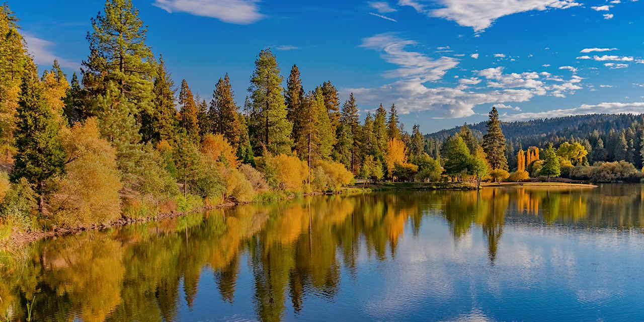 Big Bear Autumn Leaves