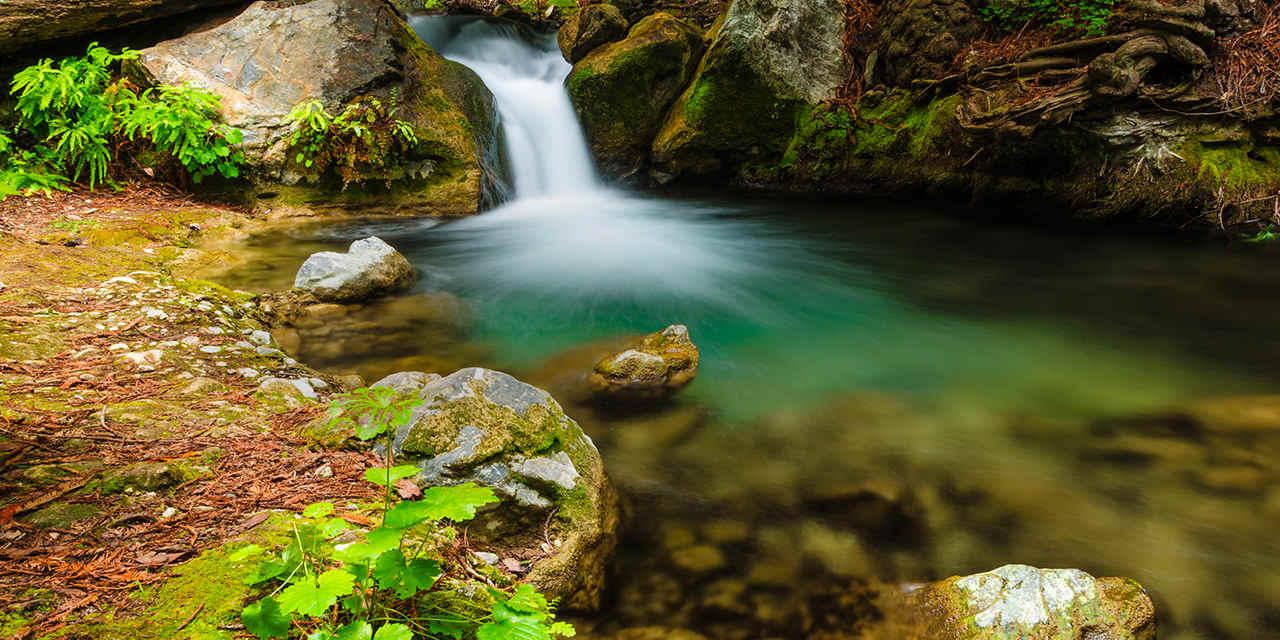 ライムキルン州立公園