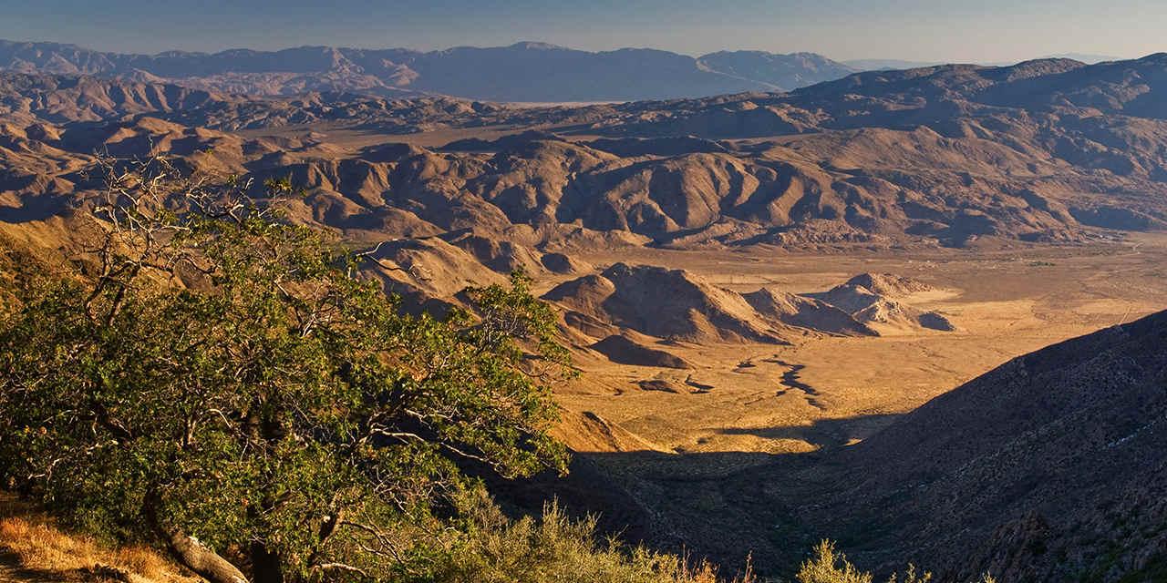 Pacific Crest Trail: Laguna Mountains