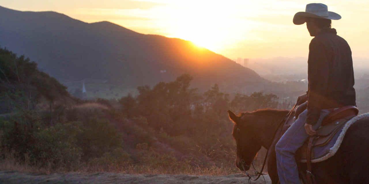 Cavalos do Griffith Park